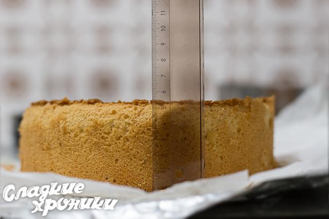 Высота бисквита